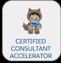 Consulting_Partner_Program