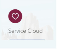 Service Cloud Experts